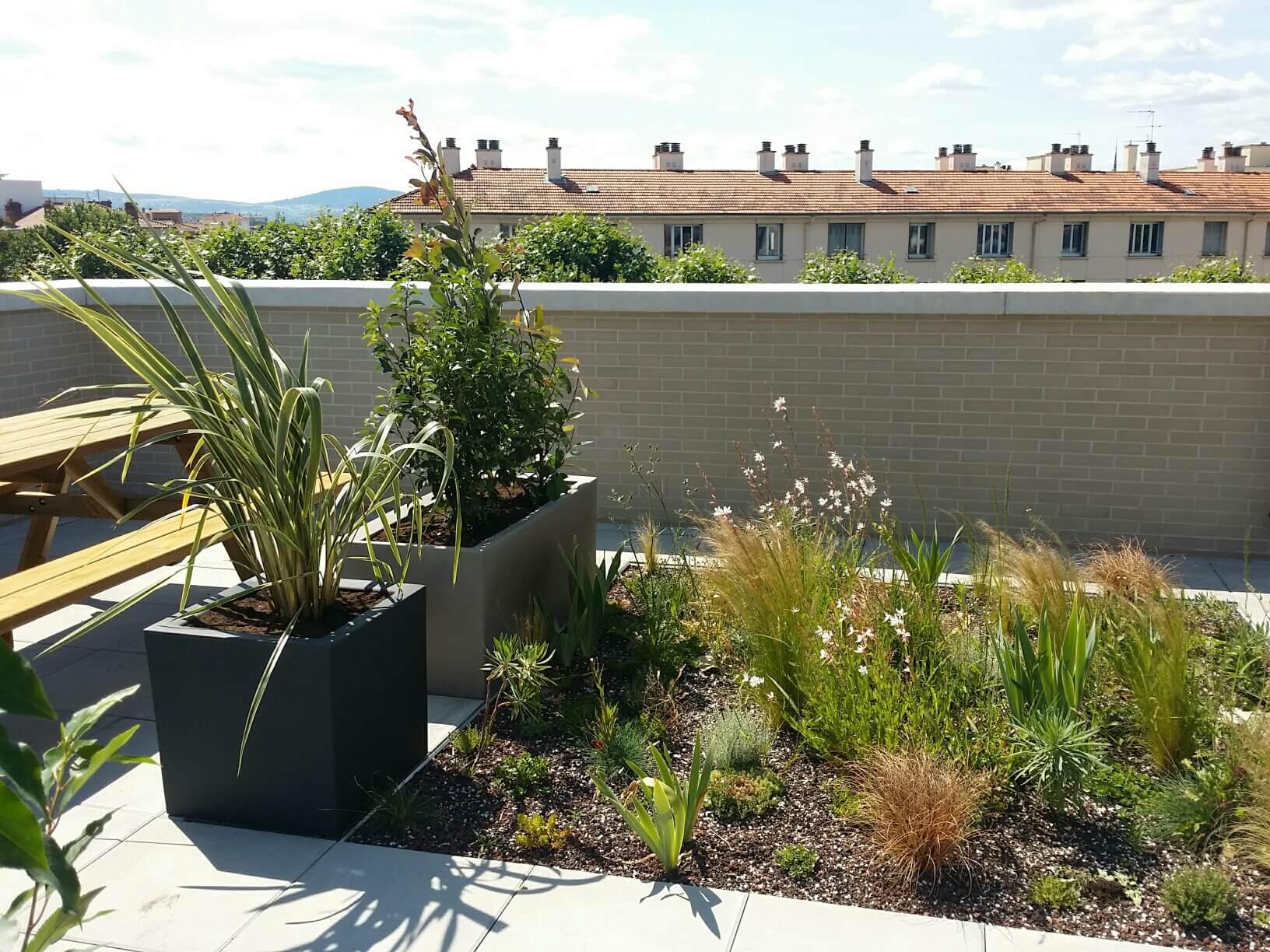 Rooftop, Un toit terrasse en centre-ville