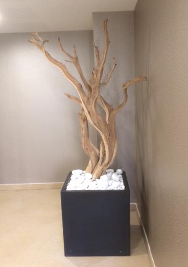 Mise en valeur d'éléments en bois flotté